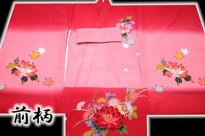 画像2: ■【最高級】 花模様 ボカシ 鼓 女児 七五三 お宮参り 正絹 祝着物■