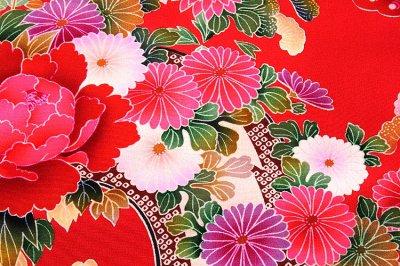 画像3: ■【最高級】「染め分け-金駒刺繍」 花柄 女児 七五三 お宮参り 正絹 祝着物■