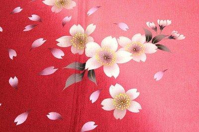 画像3: (訳ありアウトレット品)■「仕立て上がり-正絹」 華やか 桜尽くし ボカシ 振袖■
