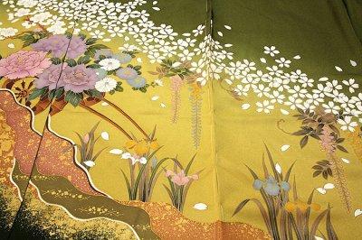 画像1: (訳ありアウトレット品)■「高橋かおり-KAORI TAKAHASHI」 桜に藤柄 ボカシ 金駒刺繍 金彩加工 正絹 訪問着■