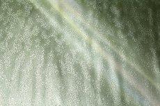 画像3: ■煌びやかな引箔 美しいグラデーション 正絹 九寸 名古屋帯■ (3)