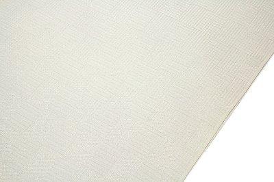 画像2: ■「羽衣-ダイヤグロ」 夏物 白色 いちまつ駒絽 反物 正絹 長襦袢■