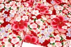 画像4: ■美しい桜柄 赤色系 花模様 煌びやかな金彩加工 地模様 女児七才〜十才 四ッ身 七五三 着物■ (4)