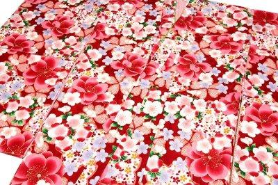 画像1: ■美しい桜柄 赤色系 花模様 煌びやかな金彩加工 地模様 女児七才〜十才 四ッ身 七五三 着物■