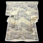 [和楽屋] ◆「本場小千谷紬織物-古志乃」 大新織物 茶屋辻之図 夏物 訪問着◆