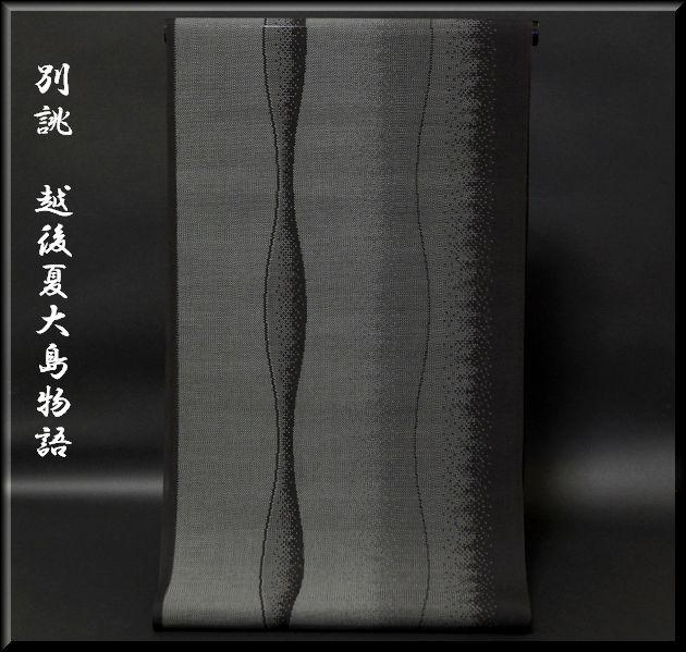 画像1: ■別誂 越後夏大島物語 夏物 黒色 紬■ (1)